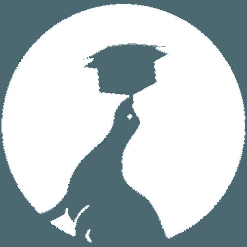 Logo Ruempelrobbe Umzugsfirma Trier